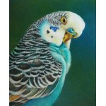 Colored Pencil Workshops - Art of The Carolinas